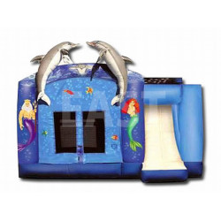 Dolphin Combo Bounce House