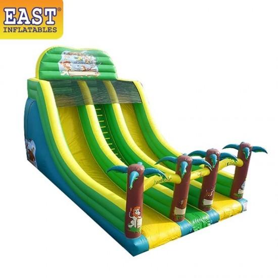Inflatable Jungle Double Line Slide