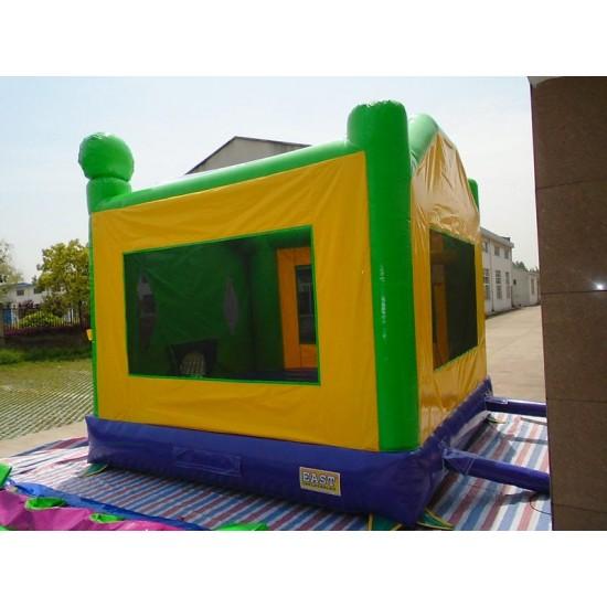 Ninja Turtle Bounce House