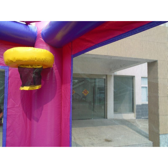 Disney Princess Combo Bounce House