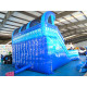 Double Water Slide Inflatable