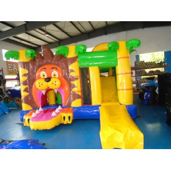 Multiplaylion Jumping Castle