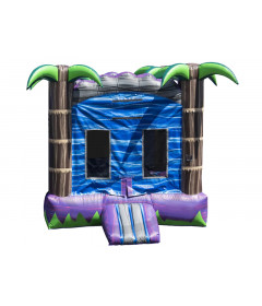 Bounce House For Sale